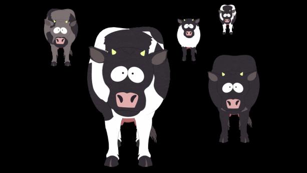 Non-human-wild-animals-cows